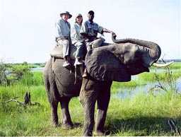 Guy and Vee Davis riding an elephant.