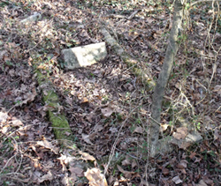 Volunteers located the overgrown cemetery plot containing the grave of Mrs. Pearl E. Williams.