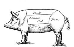 Diagram of meat sections of a hog.