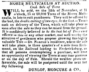 Ad in Richmond Enquirer, 6 November 1838, showing Norton raised other plants and trees.